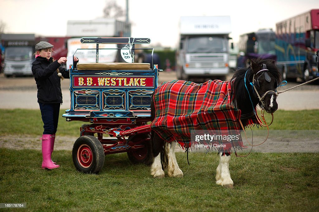 Exhibitors prepare their horses for the parade on April 1, 2013 in Ardingly, United Kingdom. The Parade is an amalgamation of two traditional parades, the London Cart Horse Parade, founded in 1885 and the London Van Horse Parade, founded in 1904. The objectives of these parades was to improve the general condition and treatment of London's working horses and to encourage drivers to take a humane interest in the welfare of their animals. There is a wide variety of breeds of animal ranging from donkeys to Dutch Friesians and Gelderlander's, to magnificent heavy horses.