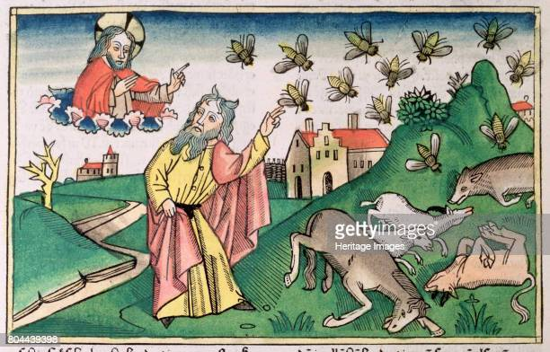 2032 Moses and the swarm of flies one of the Seven Plagues of Egypt Facsimile copy of a 15th century manuscript of the German School Artist Unknown