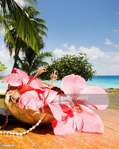 Exotischen tropischen Hibiskus Blumen im Traum Strand-Polynesien