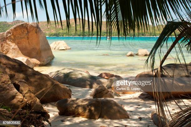 Exotic paradise beach with palm trees and rocks