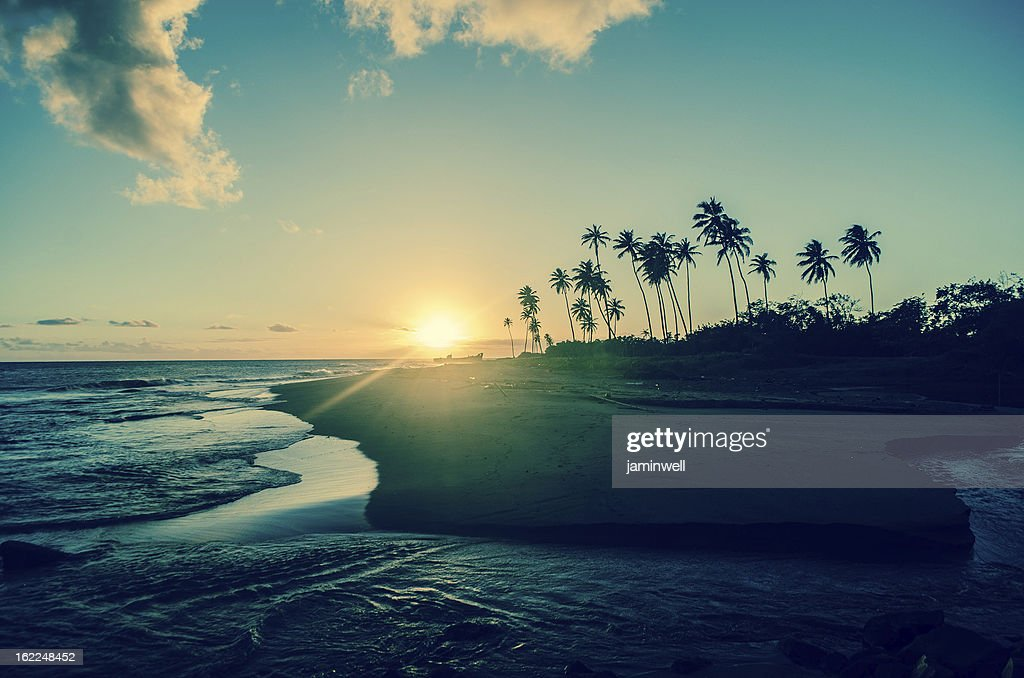exotic tropical sunset : Stock Photo