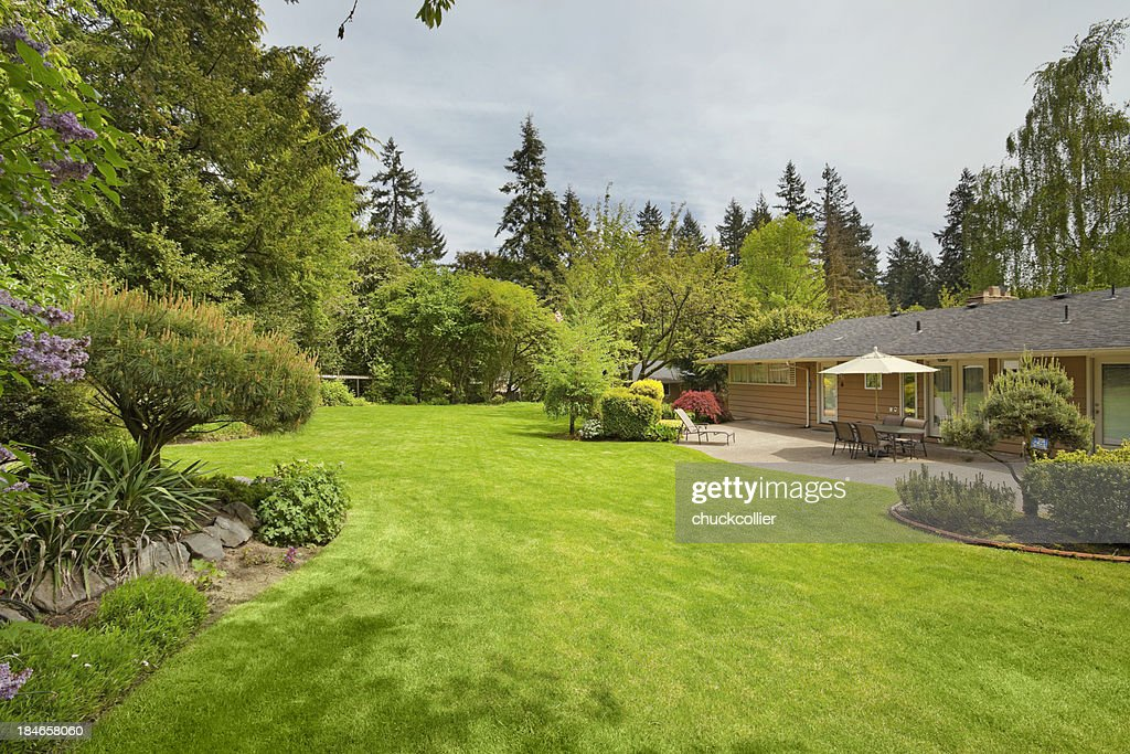 Expansive Backyard : Stockfoto