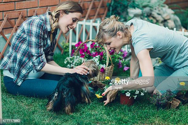 Expecting Lesbian Couple Playing With Dog In their Backyard.