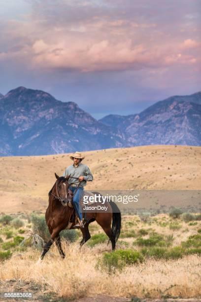 Expert cavalier d'équitation à Twlight