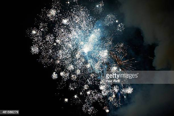 Exploding fireworks in night sky