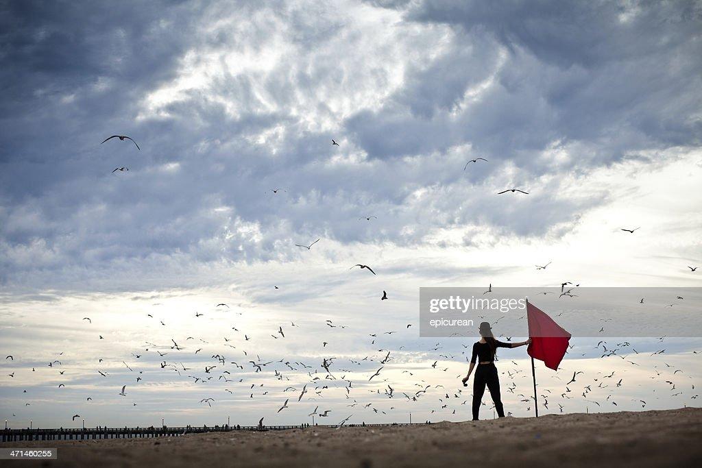 Explorer under stormy skies circled by birds