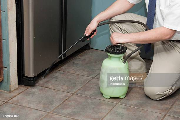 Exterminator spraying the interior baseboards of a house