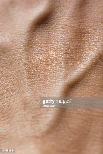 Extreme close up of a human hand
