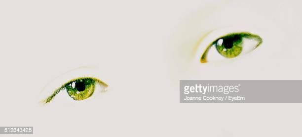 Extreme close up of human face with green eyes