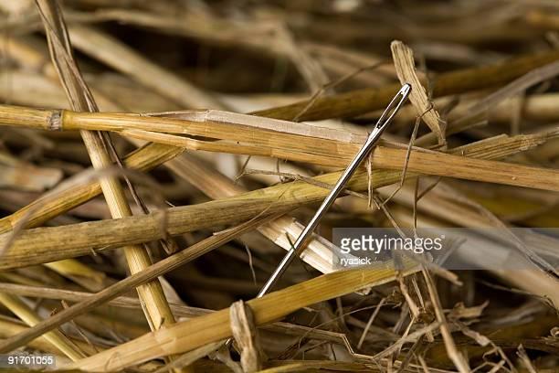 Extreme Nahaufnahme von einer Nadel im Heuhaufen