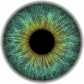 Abstract illustration of a eye ball