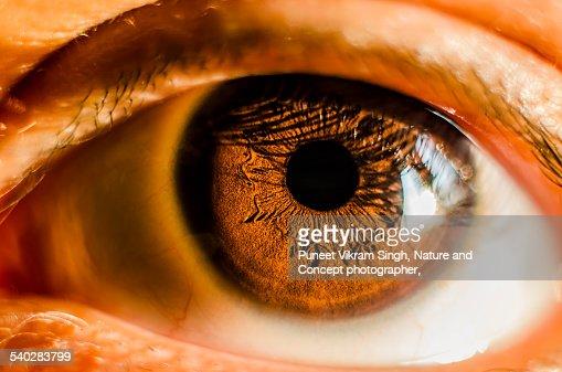 Eye close up shot