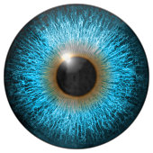 Eye iris generated hires texture