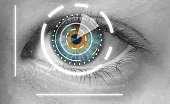 Eye viewing digital information. Security system.