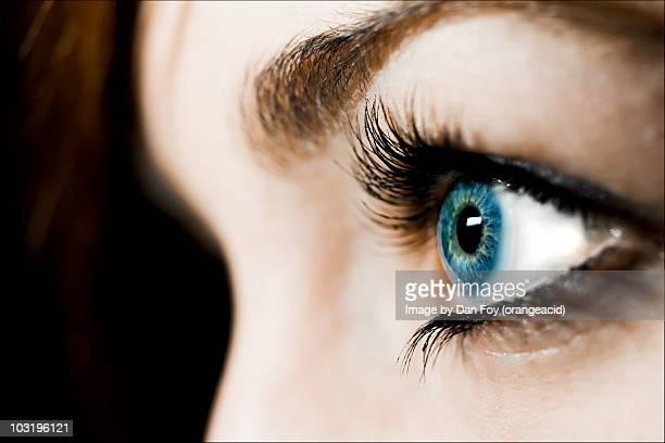 Eyelashes, blue eyes, and contacts