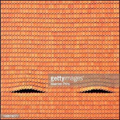 Eyes wide shut : Stock Photo