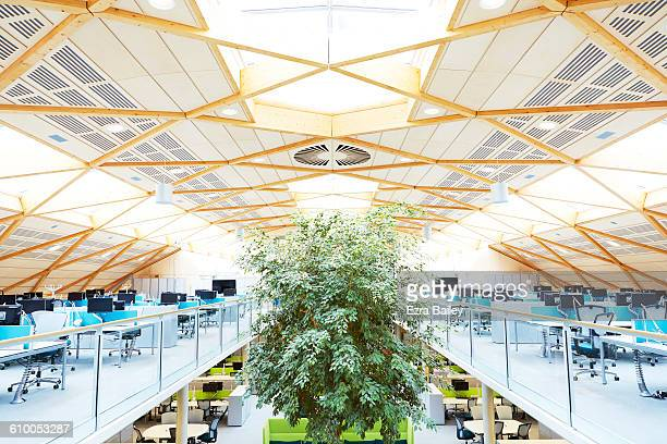 Modern  sustainable office with plants.