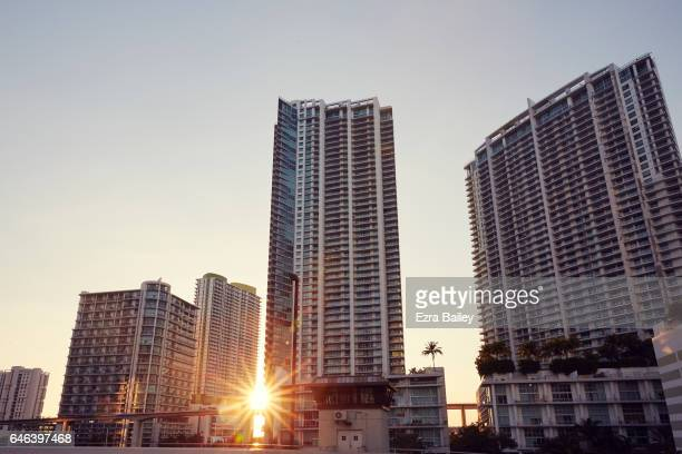 Miami city scape at sunset