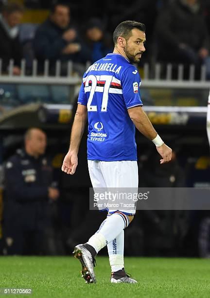 Fabio Quagliarella of UC Sampdoria looks during the Serie A match between UC Sampdoria and Torino FC at Stadio Luigi Ferraris on February 3 2016 in...