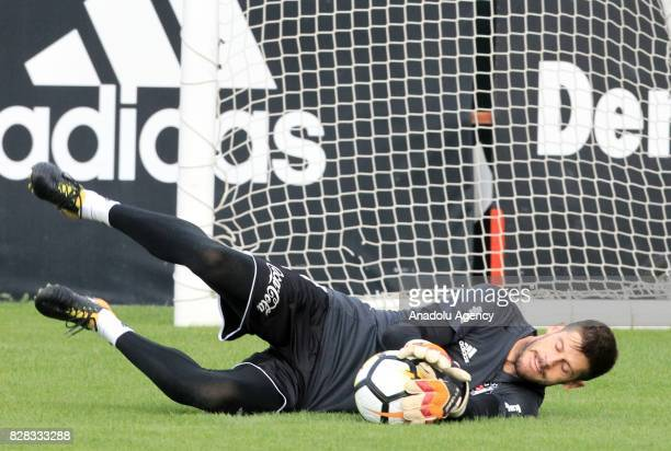 Fabri of Besiktas attends a training session ahead of the Turkish Spor Toto Super Lig new season match between Besiktas and Antalyaspor at Nevzat...
