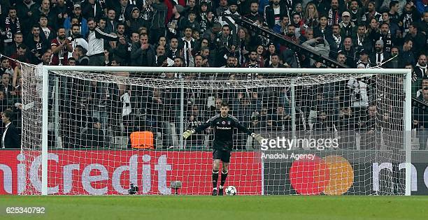 Fabri of Besiktas in action during the UEFA Champions League Group B football match between Besiktas and Benfica at Vodafone Arena in Istanbul Turkey...