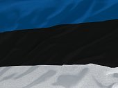 Flag of Estonia blowing in the wind with fabric texture. 3D rendering, illustration.