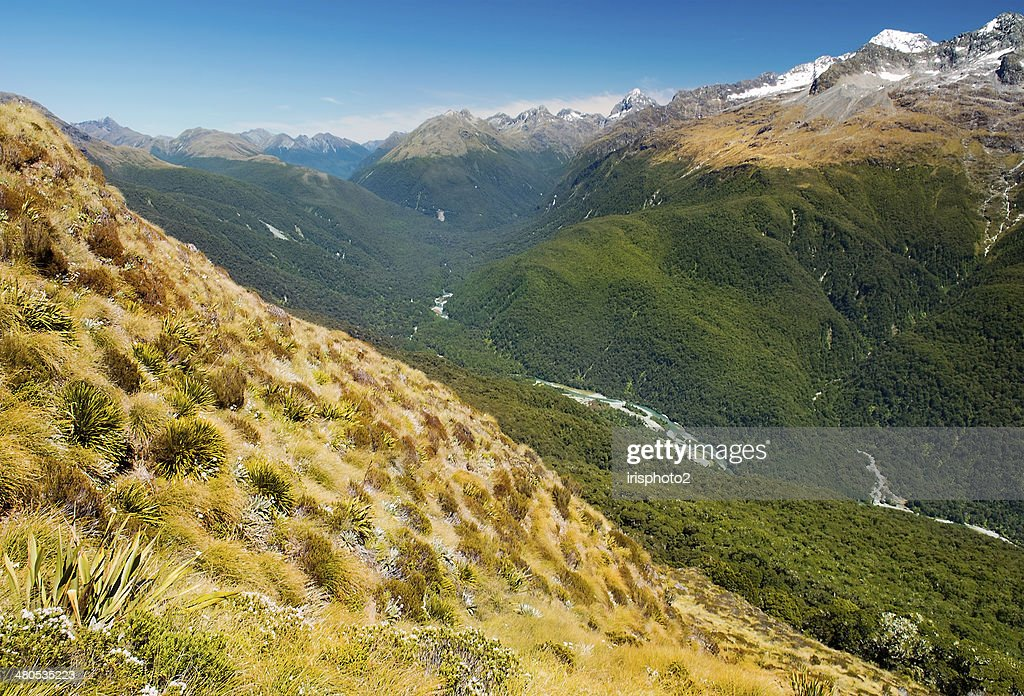 Fabulous scenery in New Zealand : Stock Photo