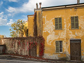 Facade of Ancient Yellow House in Parma with Red Vegetation, Italy