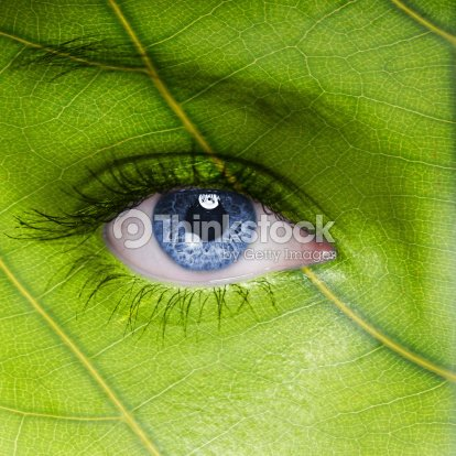 Face with leaf texture : Stock Photo