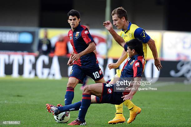Facundo Roncaglia of Genoa CFC competes the ball with Valter Birsa of AC Chievo Verona during the Serie A match between AC Chievo Verona and Genoa...