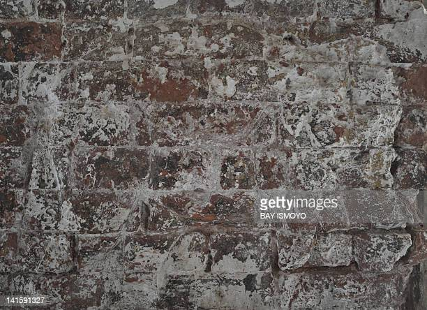 A faded depiction of an elephant is seen on the wall of a dilapidated building in the old town section of Multan on March 17 2012 Multan one of the...