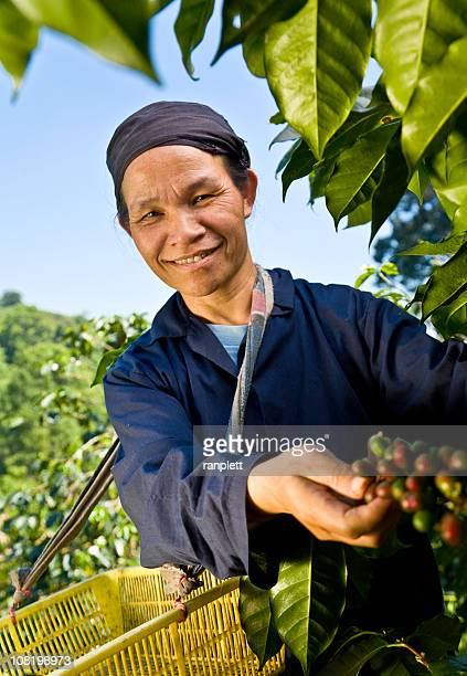 Fair-Trade-Kaffee Farmer