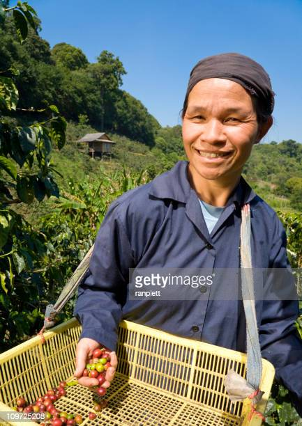 Commerce équitable café Farmer