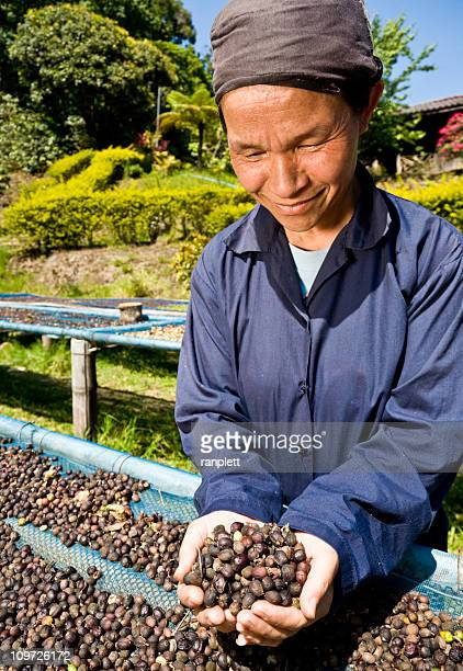 Fair Trade Coffee Farmer
