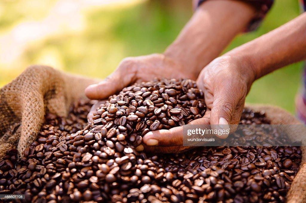 Fair trade farming is best for coffee bean produce