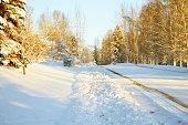 Fairbanks Alaska winter landscape