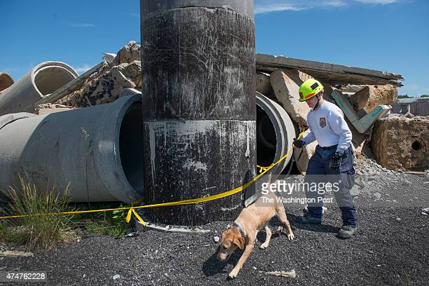 Fairfax County Urban Search and Rescue's Ron Sanders and dog 'Pryse' warm up before a training exercise to find a 'missing person' in the rubble in...
