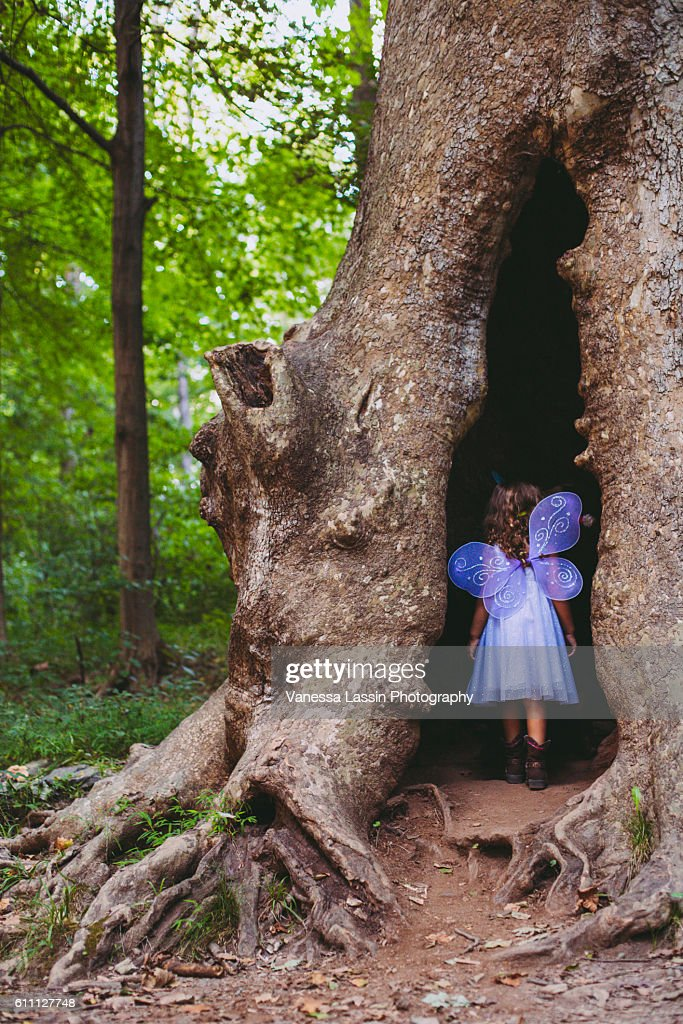 Fairy House : Stock Photo