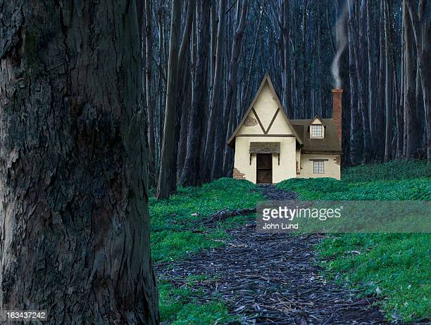 Fairy Tale Cottage In The Woods