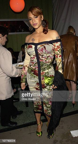 Faith Evans during EMI 2004 GRAMMY Party at Los Angeles County Museum of Art in Los Angeles California United States