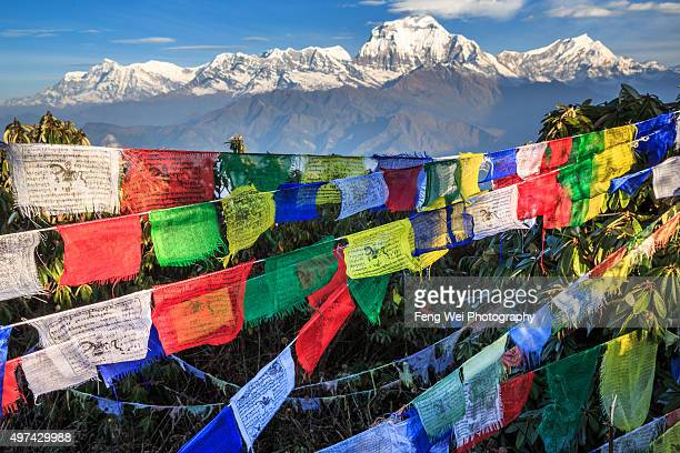 Faith In Himalayas, Poon Hill, Nepal