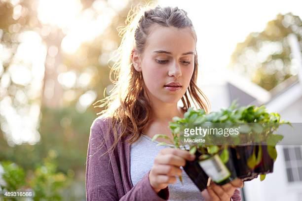 Faith plants the seed and love makes it grow