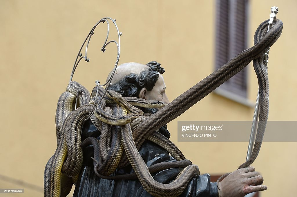 Faithful carry a statue of Saint Domenico covered with live snakes during an annual procession in the streets of Cocullo, a small village in the Abruzzo region, on May 1, 2016.