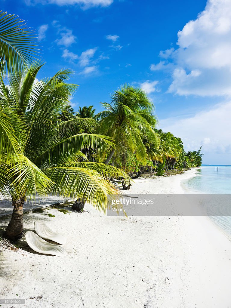 fakarava island luxury holiday relaxing at tropical beach lounge chairs stock photo - Beach Lounge Chairs