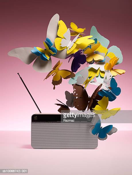 Fake butterflies and radio, close-up