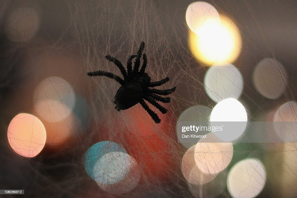 A fake spider hangs in webbing at Angels Fancy Dress on October 28 2010 in London England The world famous costume shop is having one of its busiest...