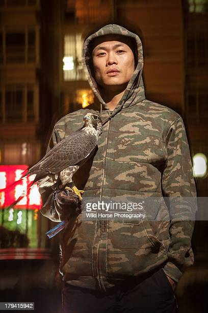 A falconry hunter  with his Peregrine(female )