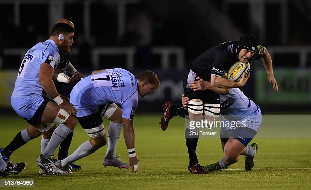 Falcons forward Mark Wilson makes a break during the Aviva Premiership match between Newcastle Falcons and Worcester Warriors at Kingston Park on...