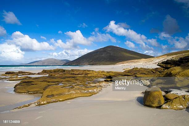 Falkland Beach Scene