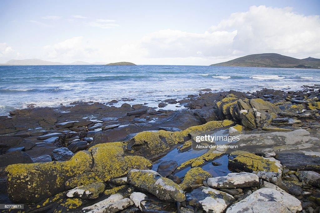 Falkland Islands Coast : Stock Photo